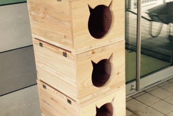 Des abris pour chats sur-mesure !