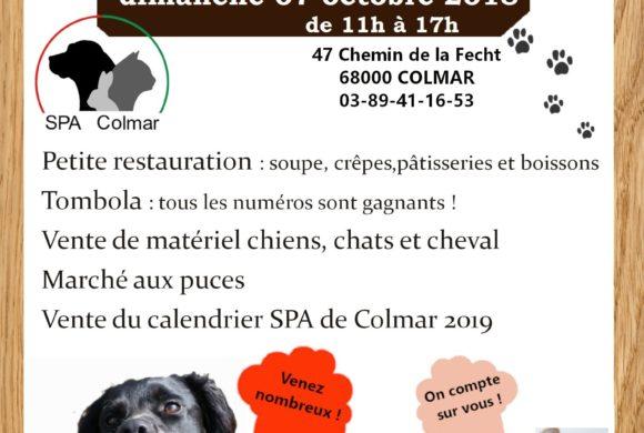 Portes ouvertes à la S.P.A. de Colmar le dimanche 07/10/2018