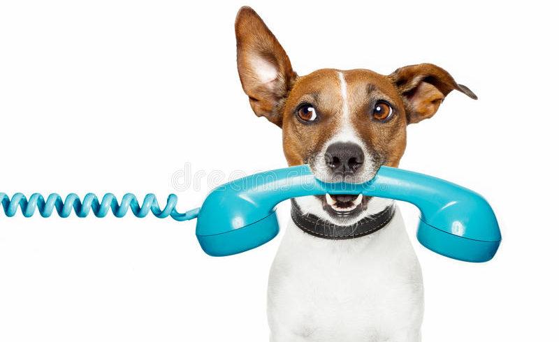 Problèmes sur les lignes téléphoniques